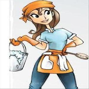 Nettoyage industriel et particuliers