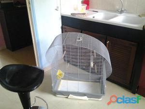 Grande cage perruche