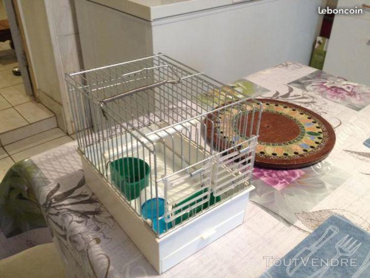 Petite cage de quarantaine ou transport