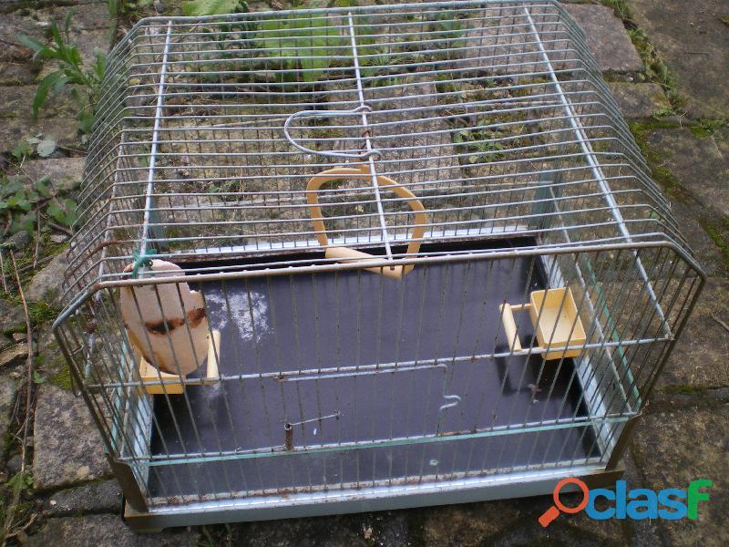 Cage pour les oiseaux