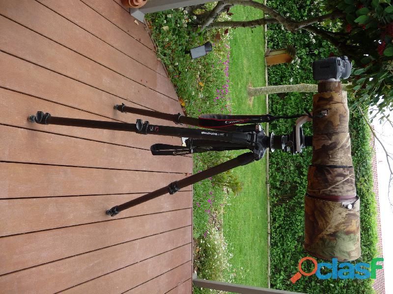 Objectif Canon Série L 600 f4 IS USM avec accessoires