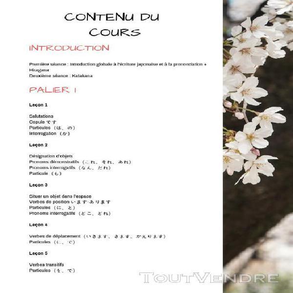 cours de japonais lyon 69008 cours particuliers