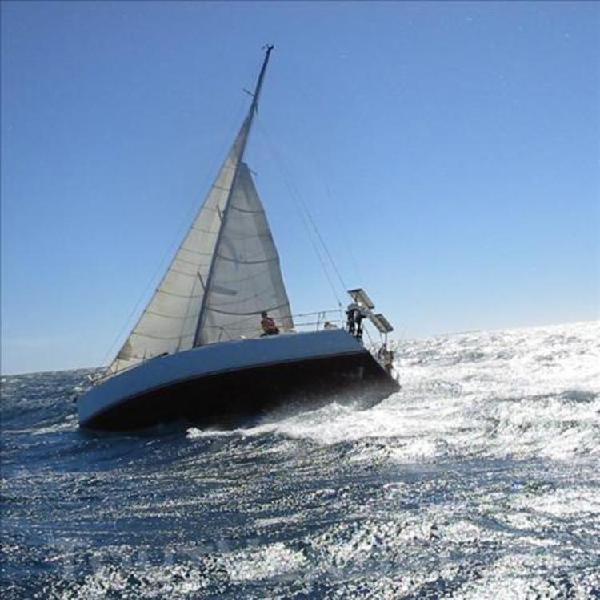 voilier course / croisière