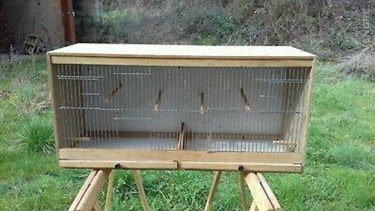 double cage à oiseaux