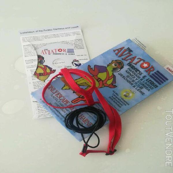 Harnais rouge pour oiseau the aviator - small - amazons, coc