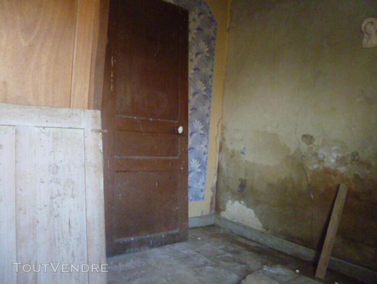 vente maison vienne marigny-brizay