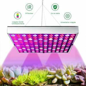 Aurora lampe horticulture 45w, led horticole floraison avec