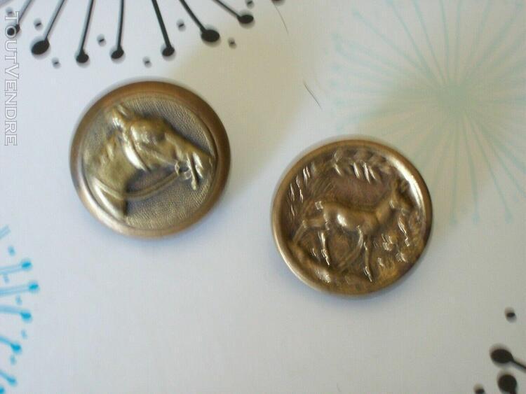 5 boutons veste de chasse