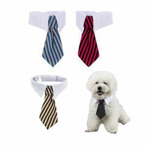 4 pièces cravate animaux chien cravate de chat ajustable