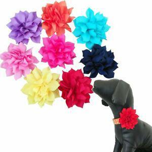 Bipy - lot de 8 breloques pour collier de chien en forme de