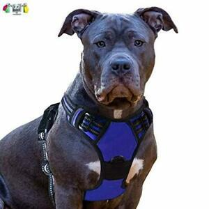 Eagloo harnais chien anti traction harnais pour chien facile