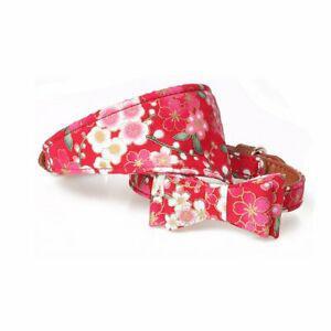 2pcs bandana foulard and bavoir pour noeud papillon, petit