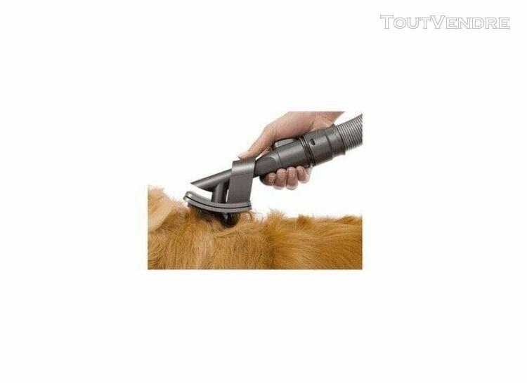Toilettage pour animaux dyson brosse groom original