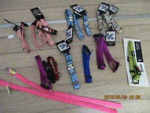 lot 20 colliers nylon chien pour revendeur marché brocante