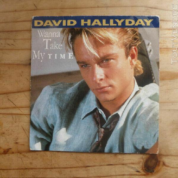 "David halliday 45t ""wanna take my time"" / livraison en lettr"