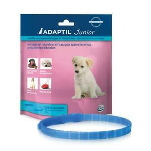 Adaptil junior – anti-stress pour chien – collier pour