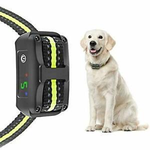 Collier anti aboiement chien récepteur