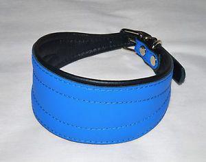 Collier chien lévrie levrette barzoï bleu neuf en cuir