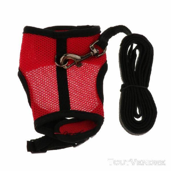 Harnais lapin régable ceinture de sécurité gilet de