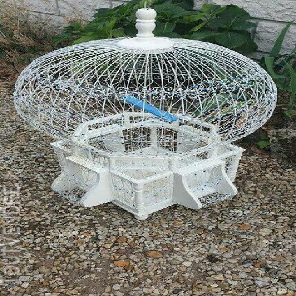 Cage oiseaux oriental