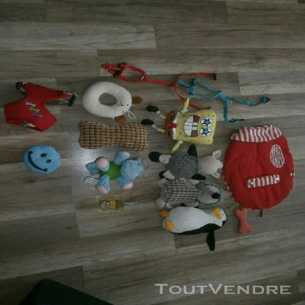 Manteau pour chien et divers jouet harnais parfum