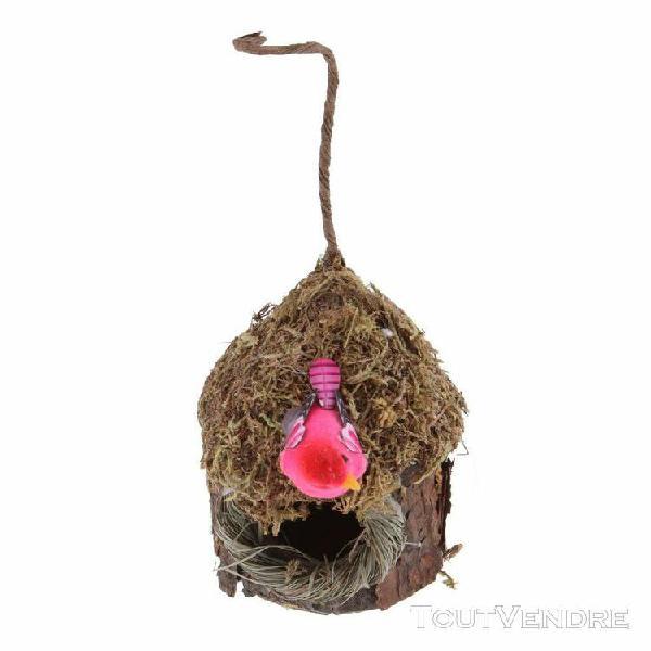 Nid oiseau perroquet 【 ANIMAUX Août 】 | Clasf