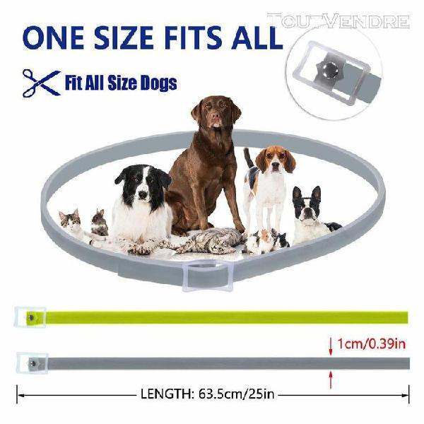 Bayer seresto chiens chats jusqu'à 8 puces mois et tick