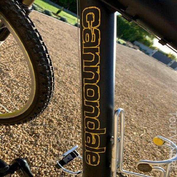 Autocollants fourche pour v/élo mod/èle Bike Lefty Cannondale XLR 29er Bord noir couleur vert 29