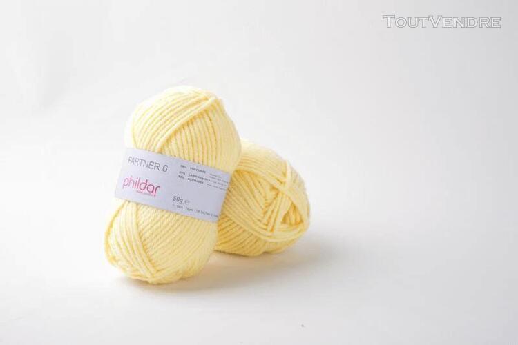 pelote de laine partner 6 poussin 50 g