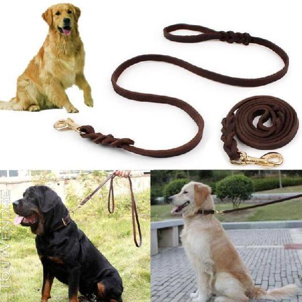 Corde traction cuir marche laisse ceinture sécurité chien