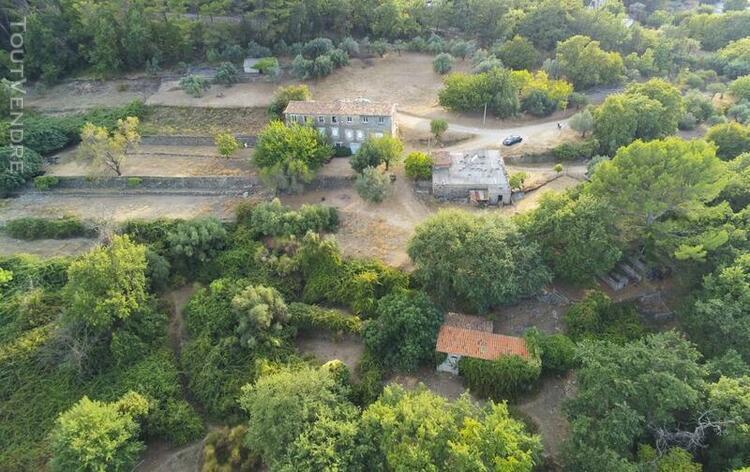 Dpt var (83), à vendre figanieres propriété agricole de