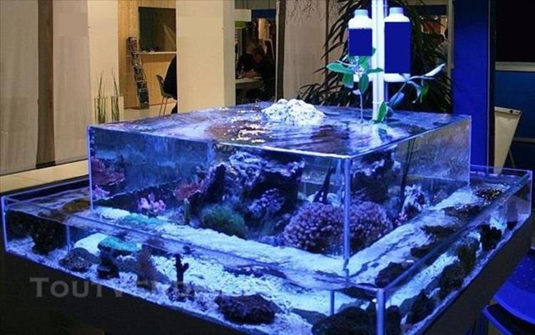 fabrication d'aquarium sur mesure