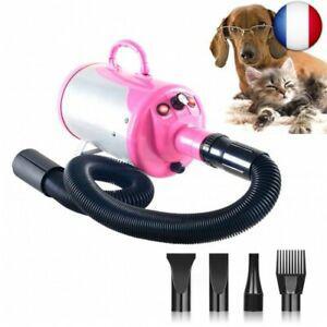 Séchoir sèche-poils toilettage pour chiens chats animaux,
