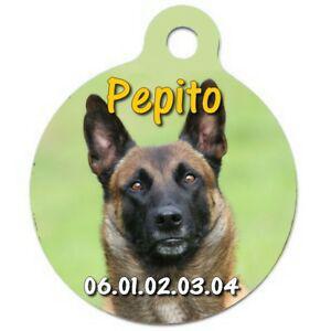 Médaille chien malinois personnalisée avec nom et n°de