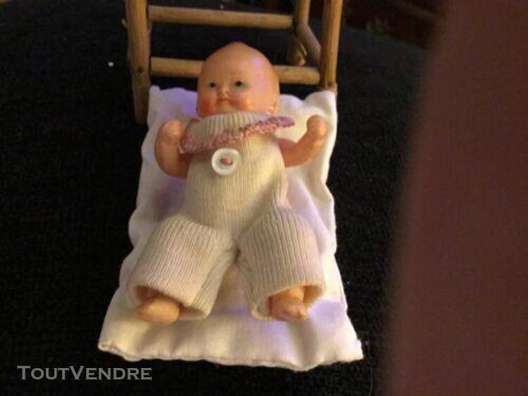 Un petit bébé petit colin 7,5 cm et son panier en vannerie
