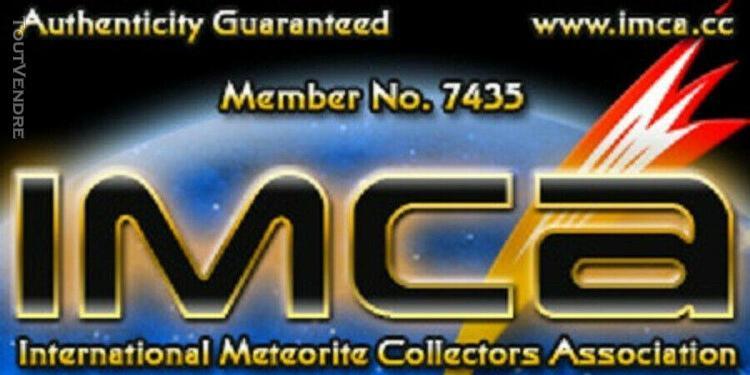 Meteorite nwa 12960 martian shergottite end 4.1g