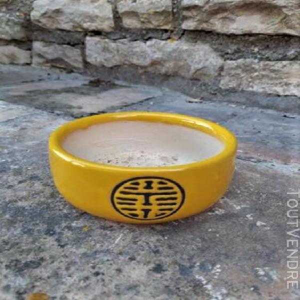 Petit pot ceramique jaune pour cactus ou succulente. tres bo