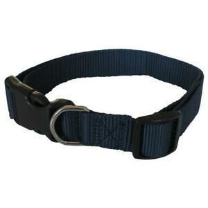 Yago collier classique bleu en nylon pour grand chien.