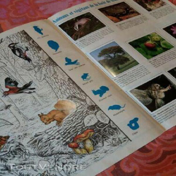 Album panini wwf nature en danger catalogue