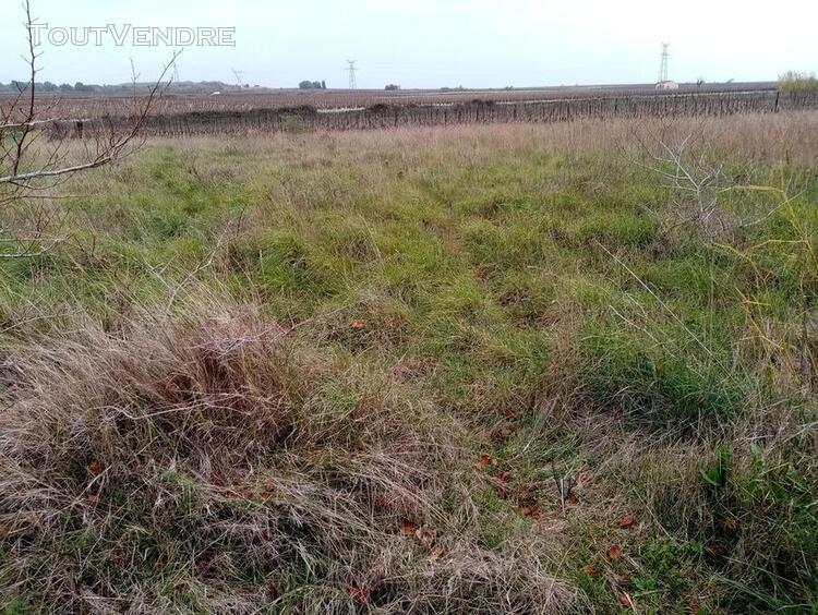 vente terrain herault florensac