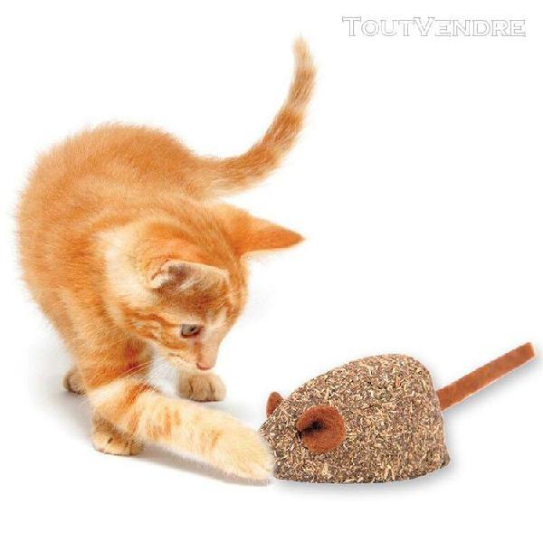Souris forme chat souris menthe balle jeu enduit d'herbe à