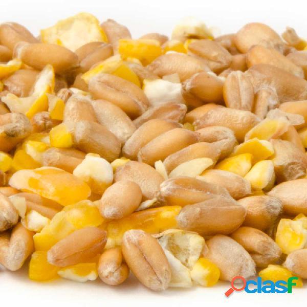 Céréales mixtes