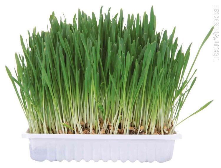 Bac d'herbe aux petits animaux - bol/env. 100 g