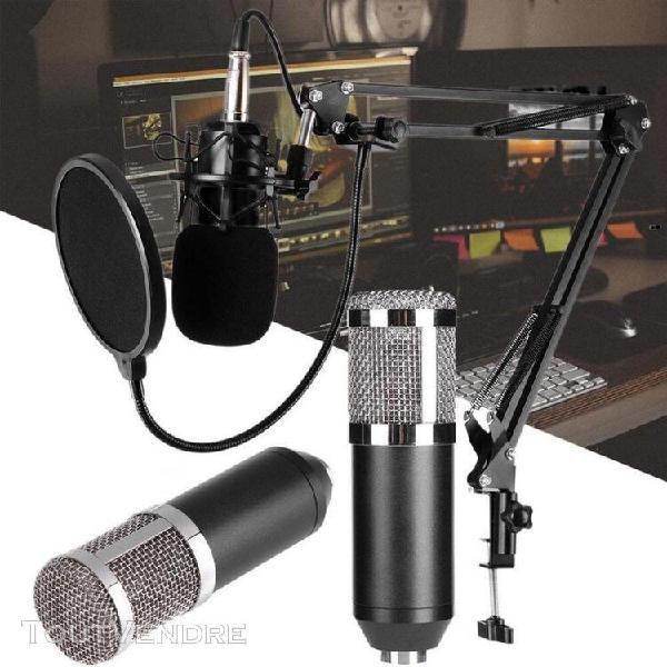 Micro à condensateur dynamique micro d'enregistrement audio