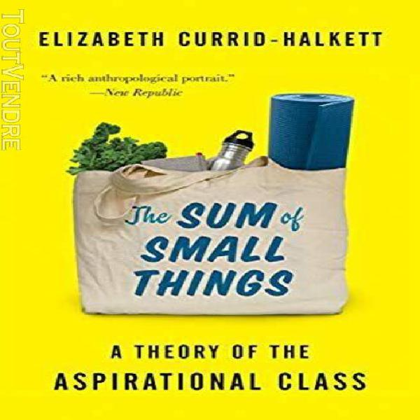 The sum of small things: a theory of the aspirational class