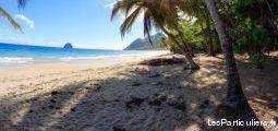 Martinique studio bord de plage sainte luce