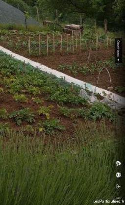 Recherche jardinier serieux disponible
