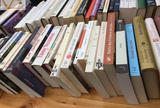 Lot de 146 livres divers et variés