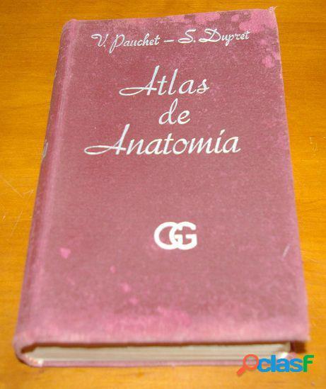 Atlas manual de anatomia, victor pauchet & s. dupret