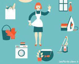 Services à la personne. ménage / repassage